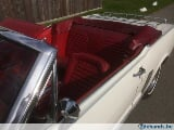Foto Ford mustang >27&28 april opendoorweekend...