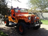 Photo CJ5 Jeep Lexus V8 for Sale in Limpopo,...
